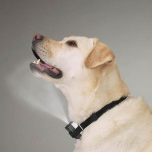 Spray Collar Anti Barking for Dogs