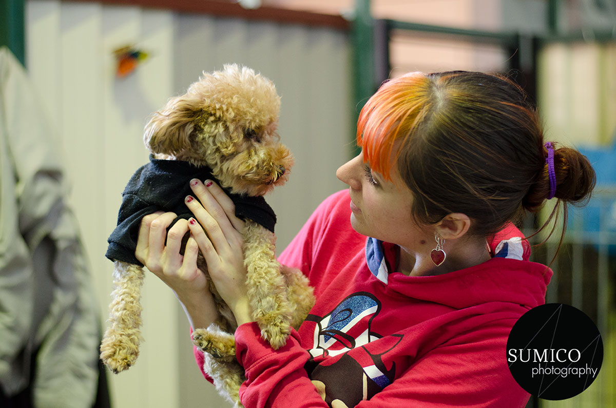 Nat and Cookie at FurryKids@Play by Sumico Photography