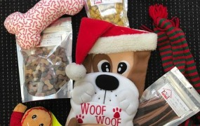 SantaPaws Competition